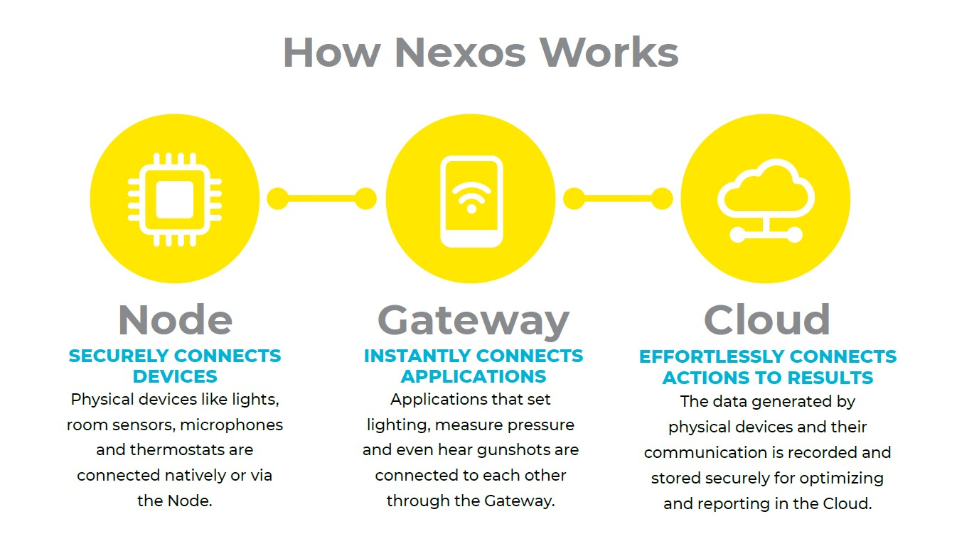 Nexos Structure and Functions